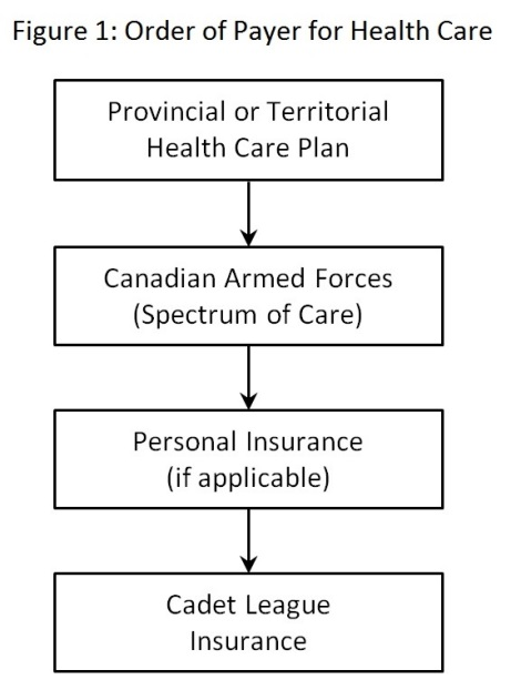 Figure 1: Order of Payer for Health Care